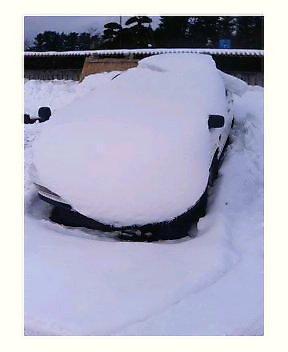 やっぱり庄内の雪は凄い