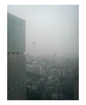 横浜は初雪