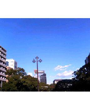 横浜は快晴