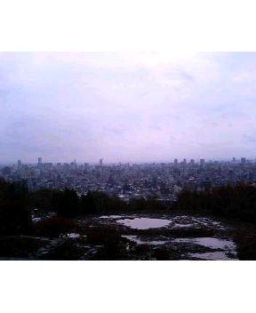 札幌の街を見渡す